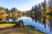Woodinville 1800 px