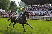 Pferderennbahn Feature
