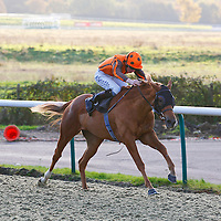 Strictly Silca and William Twiston-Davies winning the 2.00 race