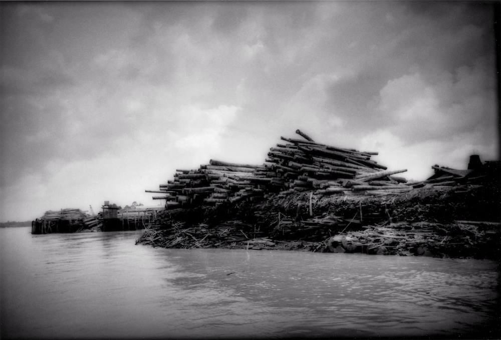 Death Throes of a Great Rainforest - Logging port on Borneo's Rejang River, Malaysia-Timber piled high upon the banks of the Lower Rejang River and is so plentiful that is it used to construct the boat landing itself, Sarawak (Borneo), Malaysia.