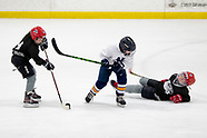 Sabres Squirt A2 May 19th 2018