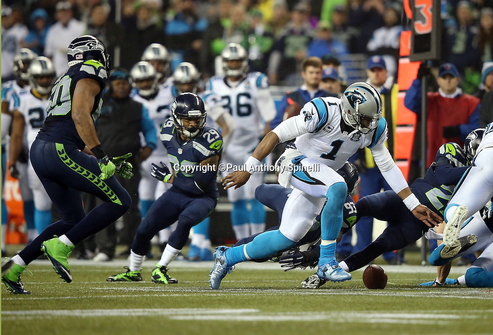 Carolina Panthers quarterback Cam Newton (1) fumbles the ball on a hit by Seattle Seahawks defensive end O'Brien Schofield (93) on a second quarter play during the NFL week 19 NFC Divisional Playoff football game against the Seattle Seahawks on Saturday, Jan. 10, 2015 in Seattle. The Seahawks won the game 31-17. ©Paul Anthony Spinelli