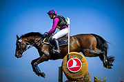 Hanna BERG (SWE) riding Quite Survivor during the World Equestrian Festival, CHIO of Aachen 2018, on July 13th to 22th, 2018 at Aachen - Aix la Chapelle, Germany - Photo Christophe Bricot / ProSportsImages / DPPI