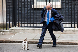 © Licensed to London News Pictures. 08/02/2018. London, UK. Kazuo Okamato, Chief Executive of Mitsubishi Heavy Industries Europe, tries to stroke Larry the Downing Street cat as he arrives at 10 Downing Street for a roundtable discussion with Prime Minister Theresa May, The Chancellor of The Exchequer Philip Hammond and select Cabinet Ministers on Japanese business and Brexit. Photo credit: Rob Pinney/LNP