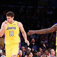 09 January 2018: Los Angeles Lakers center Brook Lopez (11) reacts next to Los Angeles Lakers forward Julius Randle (30) during the LA Lakers 99-86 victory over the Sacramento Kings, at the Staples Center, Los Angeles, California, USA.