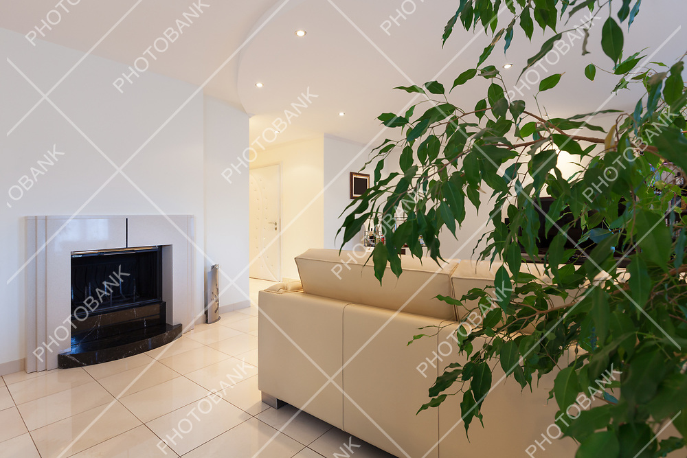living room of a modern apartment, fireplace