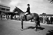 "09/08/1967<br /> 08/09/1967<br /> 09 August 1967<br /> R.D.S. Horse Show 2nd day at Balls bridge, Dublin. Photo shows Mrs D.K. Ker, Poctavoe, Co. Down on ""Liscarbin"", property of of William McCully, Newtownards, Co. Down."