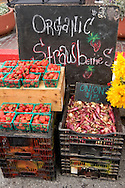 Organic Strawberries and Onions, Old Monterey Farmers Market, California