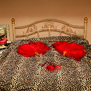 Burlesque Performer's Bedroom.