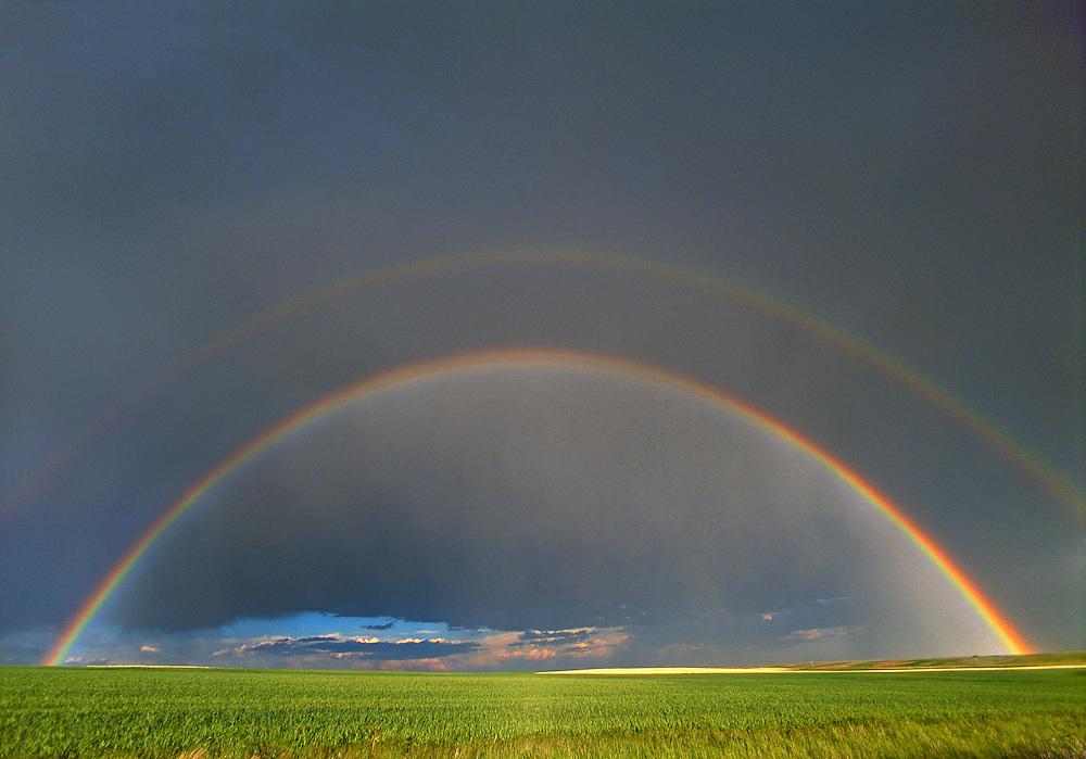 Wheat FIeld Rainbow, Cheyenne, Wyoming