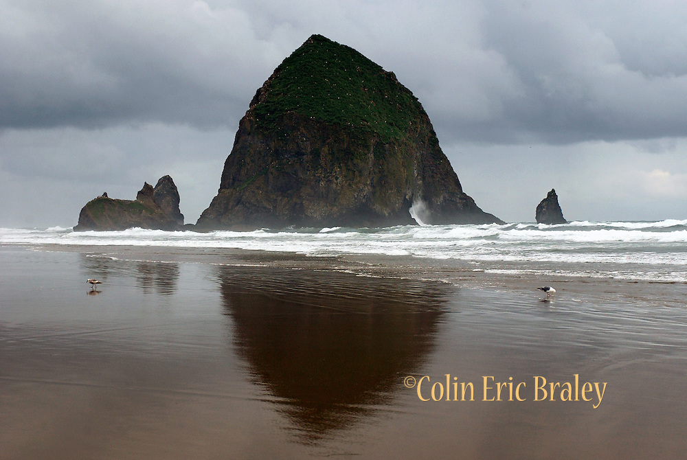 Haystack Rock is towers over Cannon Beach in Oregon as a storm passes.