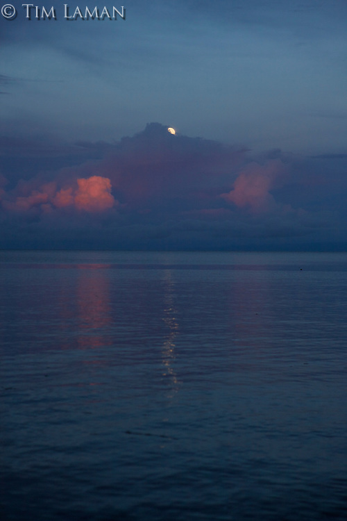 Setting full moon over Wasile Bay, Halmahera.