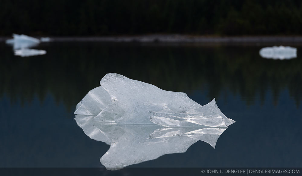 Icebergs reflect in Mendenhall Lake located at the terminus of the Mendenhall Glacier. The Mendenhall Glacier runs roughly 12 miles, originating in the Juneau Icefield, near Juneau, Alaska. The glacier is located 12 miles from downtown Juneau.