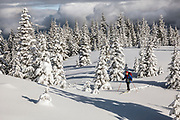 WA14507-00...WASHINGTON - Vicky Spring cross-country skiing at the summit of Suntop Mountain in the Baker-Snoqualmie National Forest. (MR# S1)