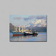 Alaska. Aleutian Islands, Unimak Island, Commercial Fishing, processor Discovery Star unloads sockeye salmon from the tender boat Kustatan