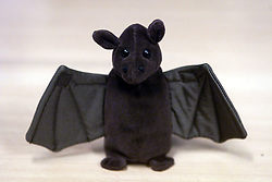 Toy Bat, July 27, 2000. Photo by Andrew Parsons/i-Images.