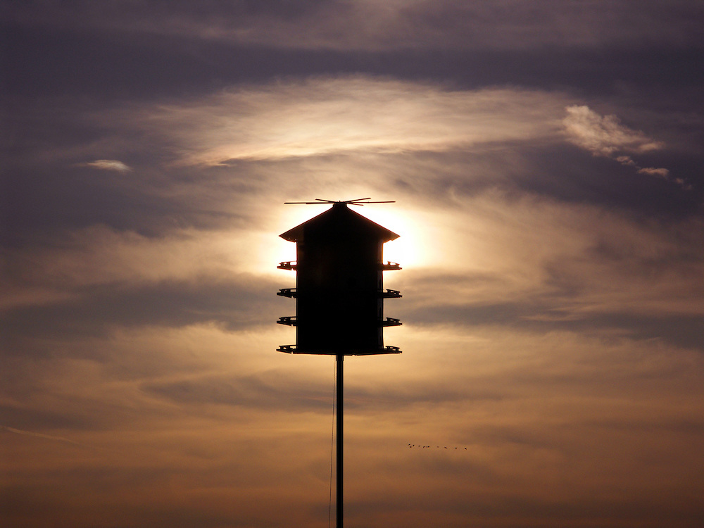 A silhouette of a large, multi-tier birdhouse at the Horicon Marsh in central Wisconsin.