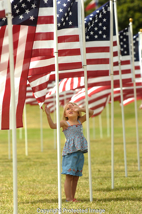 Jodi Miller Lubbock Avalanche-Journal.Murfee Elementary pre-schooler Kinsey Hines plays among the 1,000 Amercian flags erected Friday by Murfee Elementary students and their parents for the ASB American Tribute day.