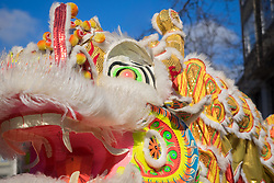 "United States, Washington, Seattle. Chinese New Year celebration in Seattle's ""International District"", traditional home of the city's Asian community. Dragon mask."