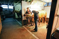 Smolders Harrie (NED)<br /> Reportage Stal Verlooy - Grobbendonk 2009<br /> © Dirk Caremans