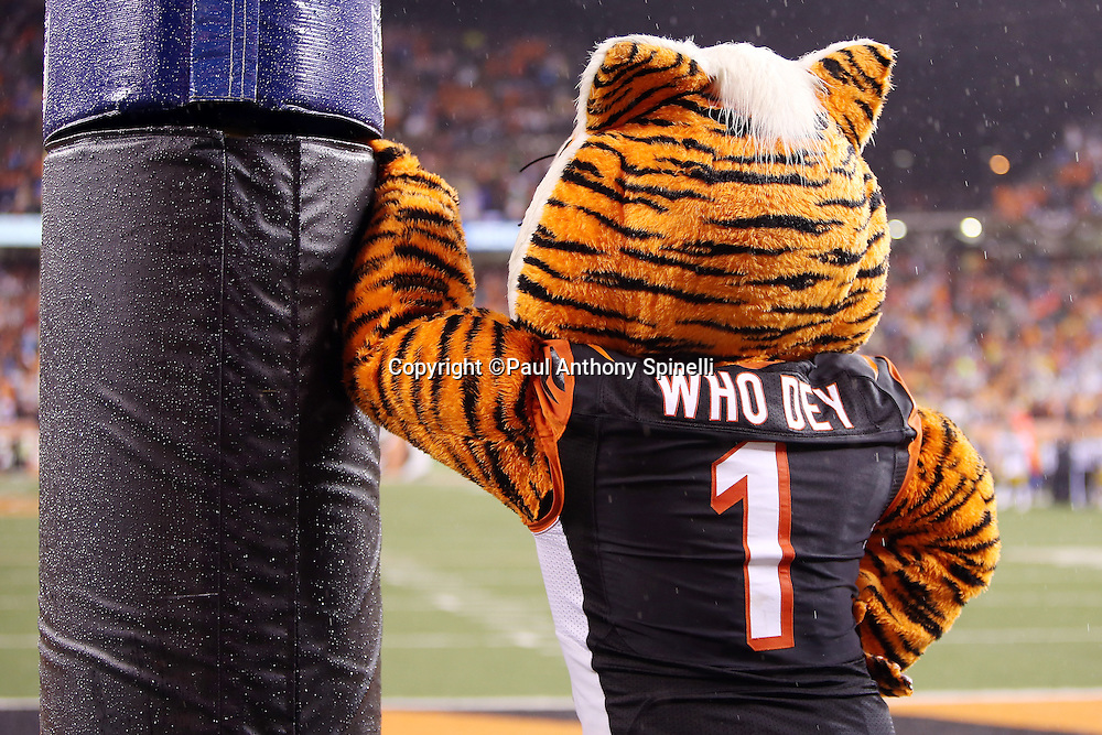 The Cincinnati Bengals mascot leans on the goal post in disgust after the Pittsburgh Steelers kick a 35 yard game winning field goal at the end of the fourth quarter during the NFL AFC Wild Card playoff football game against the Cincinnati Bengals on Saturday, Jan. 9, 2016 in Cincinnati. The Steelers won the game 18-16. (©Paul Anthony Spinelli)