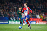 Antoine Griezmann of Atletico de Madrid during the UEFA Champions League, Group A football match between Atletico de Madrid and AS Monaco on November 28, 2018 at Wanda Motropolitano stadium in Madrid, Spain - Photo Oscar J Barroso / Spain ProSportsImages / DPPI / ProSportsImages / DPPI