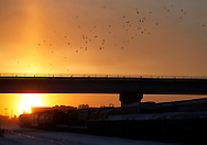 TREVOR HAGAN - The sun rises behind the Salter Bridge around 8:30am. <br /> December 26, 2010
