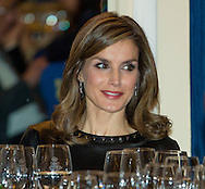 Madrid, 10-11-2016 <br /> <br /> <br /> King Felipe and Queen Letitia at the DELIVERY OF THE XXXIII EDITION OF THE PRIZE OF JOURNALISM &quot;FRANCISCO CERECEDO&quot;, granted by the Association of European Journalists, Mr. Claudio Magris<br /> <br /> <br /> COPYRIGHT ROYALPORTRAITS EUROPE/ BERNARD RUEBSAMEN