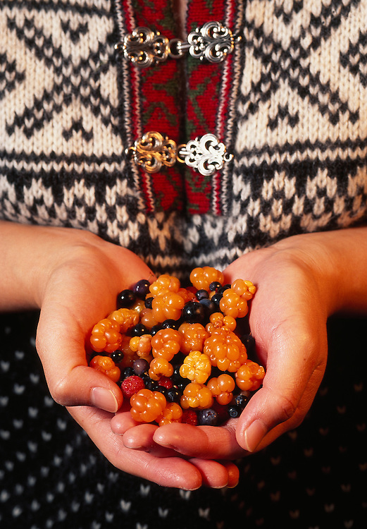 Woman holding berries gathered in the Norwegian forest