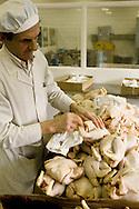 Cook preparing raw chicken in a hospital kitchen