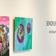 2017-03-26 Senior Exhibition