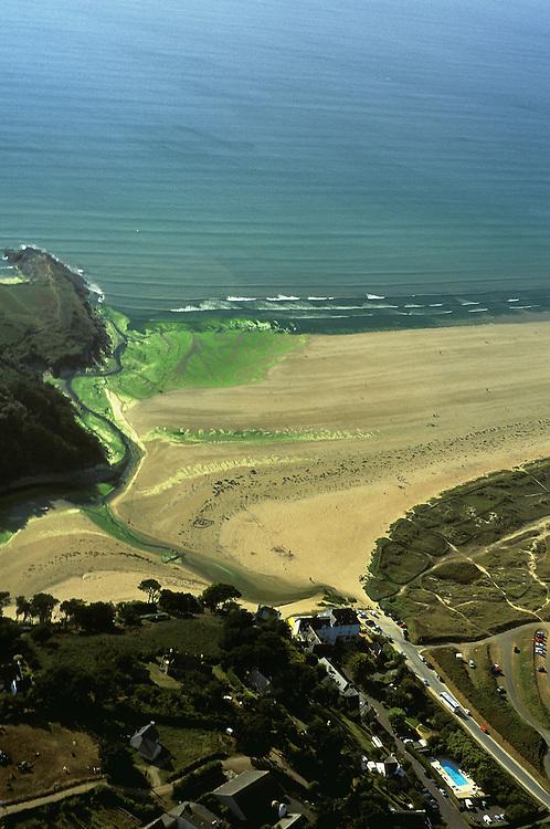 Accumulation d'algues vertes au debouche d'un ruisseau sur la plage de Plage de Beg an Ty Garde