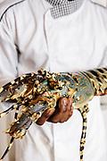 Mozambique lobster at Anantara Bazaruto Island Resort