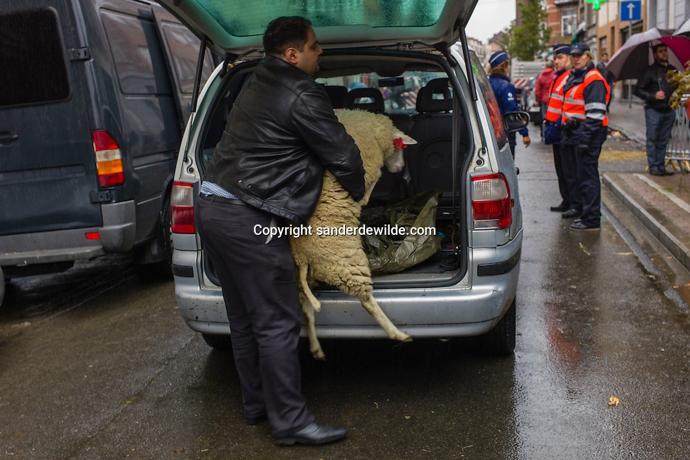 2012 26 October Brussels, Belgium. During Eid al-Adha, many Muslim families sacrifice a sheep and share the meat with the poor. A man unloads a sheep from his car. Police check if people follow the rules.