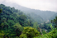 West Sumatra, Bukittinggi-Padang. Along the road between Bukittinggi and Padang. Steep terrain, humid and green.