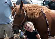 HorseLand 2015
