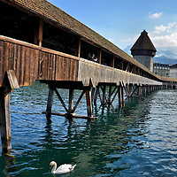 Swimming Swan Beneath Chapel Bridge in Lucerne, Switzerland<br /> No visit to Lucerne, Switzerland is complete without walking across the world&rsquo;s oldest truss bridge and hearing the wooden boards creak below your feet while staring up at the 17th century paintings within its triangular frames.  The Kapellbr&uuml;cke, also called Chapel Bridge, was built across the Reuss River in 1333.  In the background are the Wasserturm water tower and the majestic, snow-capped Swiss Alps.  The perfect accent is the swimming swan.