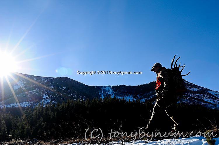 action adventure elk deer hunting
