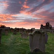 Whitby Abbey and Cemetery at dawn