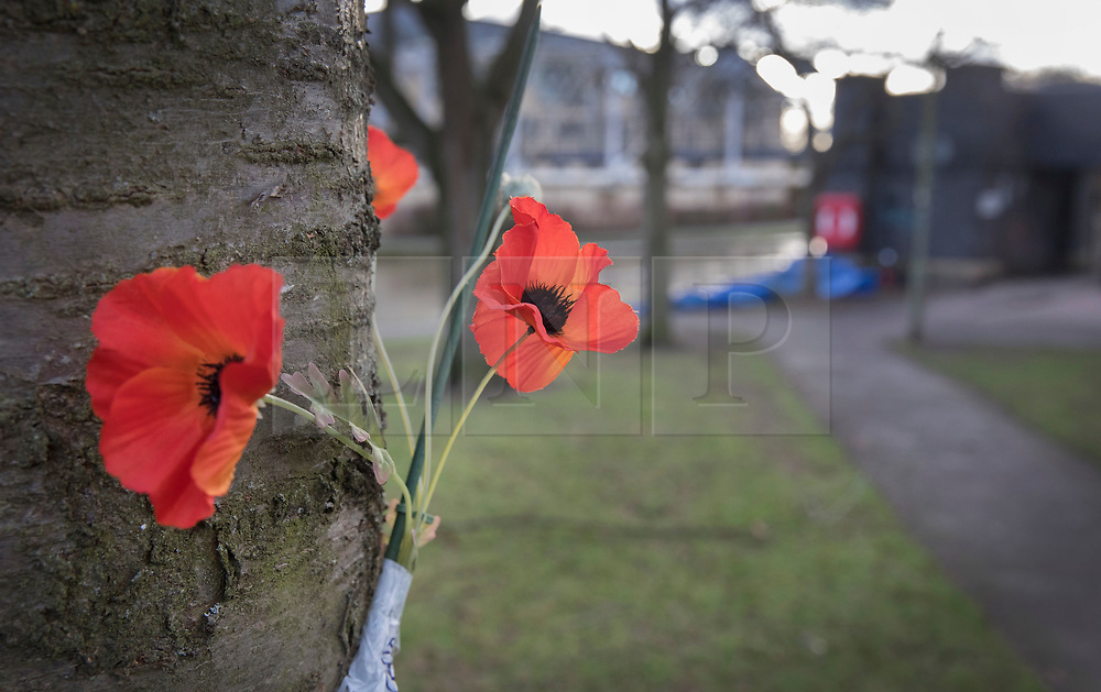 © Licensed to London News Pictures. 04/01/2018. Oxford, UK. Flowers have been placed on a tree at scene where the body of a 16 year old boy was discovered next to the River Thames in Oxford yesterday evening. A man and a woman have been arrested after the victim was found with stab wounds at Friars Wharf, who later died in hospital. Photo credit: Peter Macdiarmid/LNP