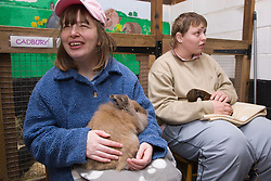 Young women with learning disabilities on a trip to an animal centre stroking pet guinea pig and rabbit,