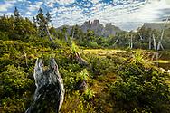 Sunrise over Mount Geryon in Cradle Mountain–Lake St Clair National Park, Tasmania