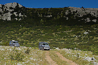 Safari tour operator Velebit Photo Safaris, Paklenica National Park, Velebit Nature Park, Rewilding Europe rewilding area, Velebit  mountains, Croatia