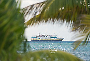 The National Geographic Quest expedition ship viewed through tropical palm trees in Belize.