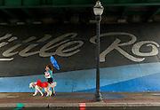 Arkansas Democrat-Gazette/BENJAMIN KRAIN --10/23/2015--<br /> Arnie Peacock, a large Golden Doodle, wears a rain coat as he is taken for a walk in the rain by his handler Julie Byrom on River Market Ave. in Little Rock Friday afternoon.