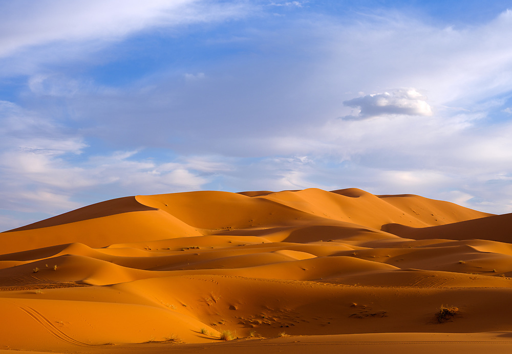 MERZOUGA, MOROCCO - CIRCA MAY 2018: Afternoon golden light  over the dunes of the Sahara Desert