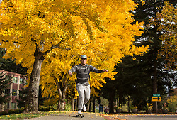 David Kamakea '20, on his skateboard near the changing ginkgo trees at PLU, Tuesday, Oct. 25, 2016. (Photo: John Froschauer/PLU)