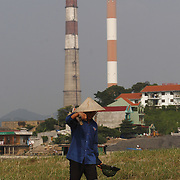 A fisherman brings in his catch outside the coal-powered electricty plant in Phai Lai, about 70 kilometers east of Hanoi, Vietnam, 14 September, 2007.