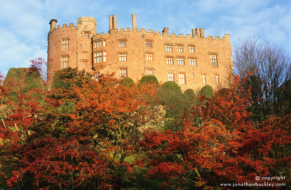 The castle with acers in full autumn colour  in the foreground
