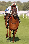 HAYYAN (1) and IORITZ MENDIZABAL winning The President Of The UAE Cup (UK Arabian Derby) Group 1 PA over 1m 2f (£80,000) during the fourth and final day of the St Leger Festival at Doncaster Racecourse, Doncaster, United Kingdom on 14 September 2019.